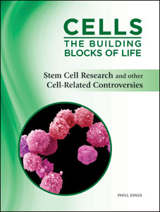 stem cell research controversies Stem cells are a type of cell that we all produce they are nonspecific cells that  could become any kind of cell in the body there is hope that.